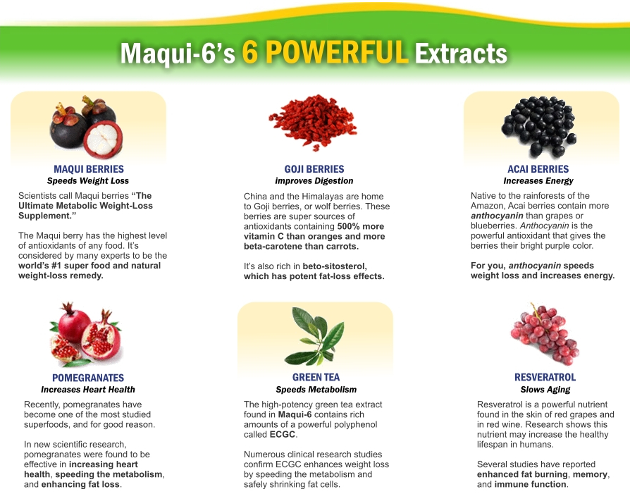 Maqui-6 Ingredients